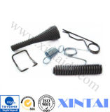 Engineer Support를 가진 직업적인 Compression Spring