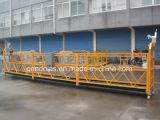 Capacité de charge utile suspendue de la plate-forme (ZLP800) 800kg