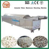 Légumes industriels de blanchiment de l'eau de la machine Machine de blanchiment de champignons