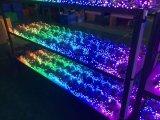 Heiße Garantie 2years des Verkaufs-12mm farbenreiches Pixel-Licht RGB-DC5V LED mit Ws2811 /1903