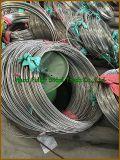 Haute qualité Ti Gr. 3 Titane & Titanium Alloy Pipe / Tube