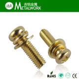 Acier inoxydable Philip Pan Head Sems Screw avec Spring & Flat Washers