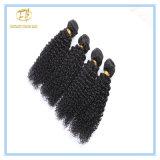 Unverarbeitete natürliche Farben-verworrenes lockiges indisches Haar mit Fabrik-Preis Wfikc-001