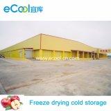 Armazenamento frio super de capacidade elevada do tamanho da baixa temperatura o grande e Refrigerate o equipamento para o alimento da secagem de gelo