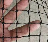 منقول [ب] بايسبول [ل-سكرين] ممارسة شبكة