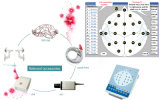CER Certified Digital EEG und Mapping System (KT88)