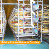 Automatische gevogeltekooi voor grill die het landbouwbedrijfapparatuur opheffen van het kippengevogelte