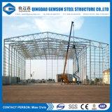 Grande depósito de Estrutura de aço Span/ Estrutura Espacial da China