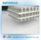 De Magneten van de Ring van de zeldzame aarde SmCo28 voor Motoren