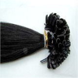 工場価格の前担保付きの毛の釘はRemyの毛の拡張をUひっくり返す
