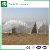 植わることのための農業のプラスチックフィルムの温室