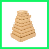 Sendendes Kasten-T1, T2, T3, T4, T5, T6/Shipping Kasten/Geschenk-Papierkasten/Verpackungs-Kasten/faltender Kasten/gewölbter Papierkasten/verpackenkasten/Ablagekasten