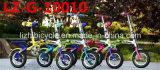 Популярный велосипед детей для 5-15 вант годовалого