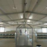 Gute Qualitätslicht-Stahlkonstruktion-Huhn-Häuser