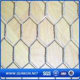 Grille métallique hexagonale en poudre galvanisée de haute qualité avec prix d'usine