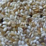 Сортировщица цвета CCD поистине цвета для Polished Round-Grain риса