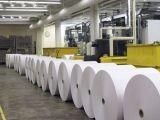 Документная бумага в рулонах/лист