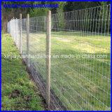 Le bétail en gros en métal clôture la frontière de sécurité de /Farm