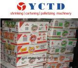 Palletizer (YCTD)