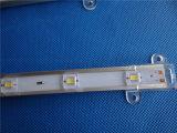 DC12V IP68 60LEDs/mètre Bande LED de lumière avec tube en caoutchouc