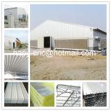 Prefabricados de la casa de aves de corral con Equipo para avicultura Equipo para la granja de pollos