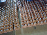 Vós2 Series Motor de indução trifásico de Alta Eficiência (Y2-355L-4, 315kw, B3)