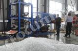 Вино вискиа охлаждая завод льда пробки машины льда пробки 10ton