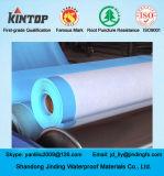 Personalizzare blu membrana impermeabile in PVC