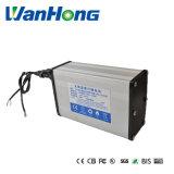 bateria de lítio de 12V 24ah para a lâmpada de rua solar
