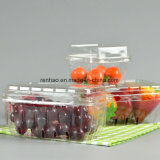 Rectángulo plástico del acondicionamiento de los alimentos de la cubierta de la alta calidad PVC/PP/Pet para la fruta