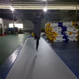 Dwf 10м Большой надувной воздушный контакт оптовая торговля