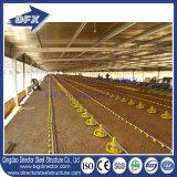 Chambre préfabriquée galvanisée à chaud de cage de poulet de bâti en acier de coût bas dans la Chambre de fermes avicoles