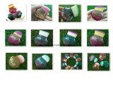 Schöner Kamm-Muschel-Form-einzelner Verfassungs-Basis-Pinsel-nettes Verfassungs-Hilfsmittel