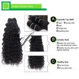 ねじれた巻き毛の加工されていないブラジルのバージンの人間の毛髪の編む毛