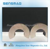 Magnete di anello permanente del magnete di NdFeB del neodimio
