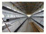 Automatisches Führen, 120 Schichten Geflügel-Huhn-Rahmen-für Verkauf trinkend