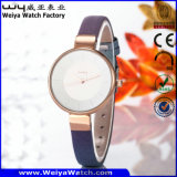 Reloj de señoras clásico del asunto del reloj de la aleación (Wy-092A)