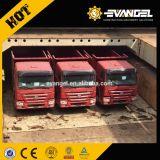 판매에 품질 보장 HOWO 덤프 트럭