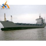 10000dwtばら積み貨物船の貨物船