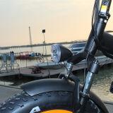 شعبيّة [20ينش] إطار العجلة سمين درّاجة كهربائيّة مع إطار [فولدبل]