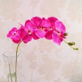 Decoración artificial del hogar de la boda de la orquídea del tacto verdadero