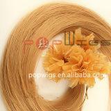 Sèche cheveux Ongles Pre-Bonded brésilien de l'extension (PPG-L-0368)