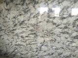 Orion blanco granito baldosas pulidas losas&+encimera