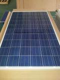 poli modulo solare 310W con TUV