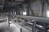 鉄鋼の鉱山機械の固定ベルト・コンベヤー