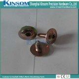 Tornillo penetrante con talla modificada para requisitos particulares borde del socket del Seis-Lóbulo de la pista del braguero
