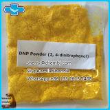 Купите тучный горящий порошок 2, 4-Dinitrophenol DNP для потери веса
