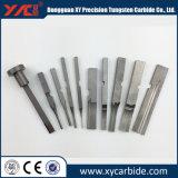 Forma especial con piezas de carburo de tungsteno de Calidad ISO ODM.