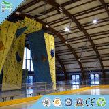 Matériaux de décoration de plafond de panneau de mur de modèle de mur