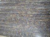 Mariposa Azul baldosas pulidas losas de granito&&encimera
